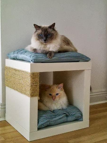 DIY cat post