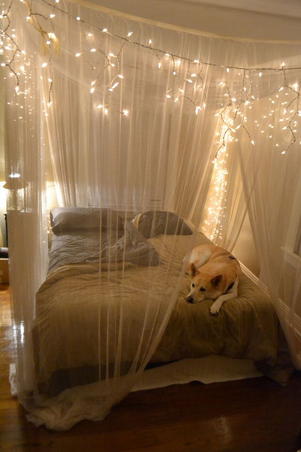 Starry Starry String Lights Year Round Home Decor Decorating Your Small Space