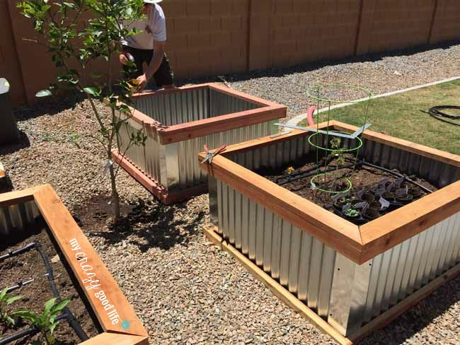 Raised Beds With Letters