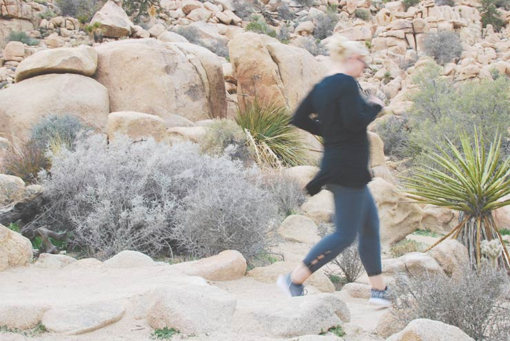 Best Hikes & Things To Do In Joshua Tree National Park